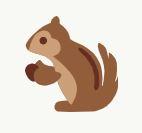 Squirrel Finance